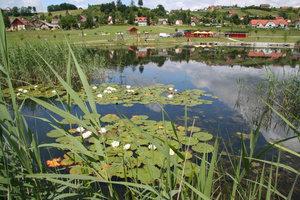 Motorikpark-Teich-Ausflugsziel-Gamlitz